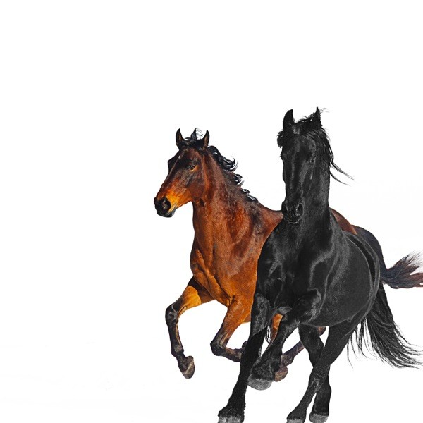 OLD TOWN ROAD - LIL NAS FEAT. BILLY RAY CYRUS