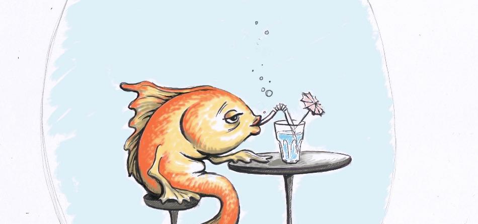 BB FISH