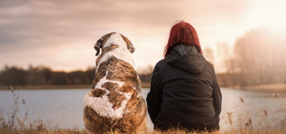 Cane e donna